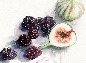 Jessica-Kendrew-Fruit-illustration-Pure-Illustration-agency
